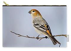 Female Pine Grosbeak Carry-all Pouch