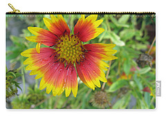 Carry-all Pouch featuring the photograph A Beautiful Blanket Flower by Ashish Agarwal