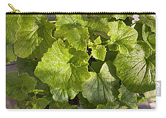 Carry-all Pouch featuring the photograph A Green Leafy Vegetable Plant After Watering In Bright Sunrise by Ashish Agarwal