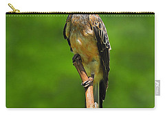 African Grey Hornbill Carry-all Pouch