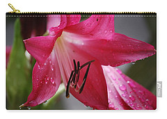 Carry-all Pouch featuring the photograph After The Rain by Judy Hall-Folde