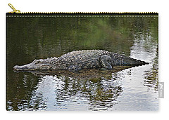 Alligator 1 Carry-all Pouch by Joe Faherty
