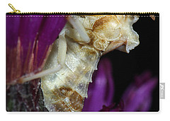 Carry-all Pouch featuring the photograph Ambush Bug On Ironweed by Daniel Reed