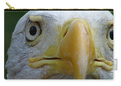 American Bald Eagle Carry-all Pouch by Randy J Heath