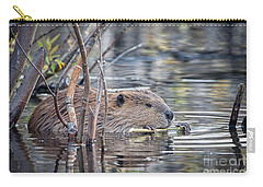American Beaver Carry-all Pouch by Ronald Lutz