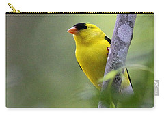 American Goldfinch - Peaceful Carry-all Pouch