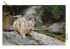 Carry-all Pouch featuring the photograph American Pika by Doug Herr
