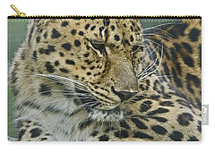Amur Leopard Carry-all Pouch