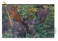 Carry-all Pouch featuring the photograph An Eye On You by Doug Lloyd