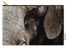 Ancient Face Carry-all Pouch by Angela Rath