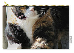 Carry-all Pouch featuring the photograph Annie Banannie by Rory Sagner