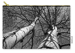 Carry-all Pouch featuring the photograph Aspen Glow by Colleen Coccia