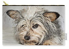 Attitude Carry-all Pouch by Jeannette Hunt