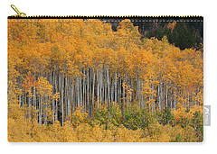 Carry-all Pouch featuring the photograph Autumn Curtain by Jim Garrison