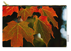 Autumn Glory Carry-all Pouch by Cheryl Baxter