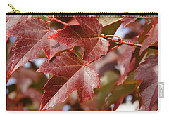 Carry-all Pouch featuring the photograph Autumn In My Back Yard by Mick Anderson