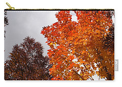 Carry-all Pouch featuring the photograph Autumn Looking Up by Mick Anderson