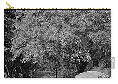 Autumn Memories Bw Carry-all Pouch