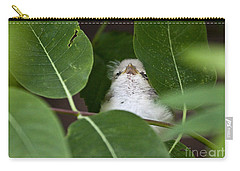 Carry-all Pouch featuring the photograph Baby Bird Peeping In The Bushes by Jeannette Hunt