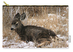 Carry-all Pouch featuring the photograph Baby Deer At Rest by Nola Lee Kelsey