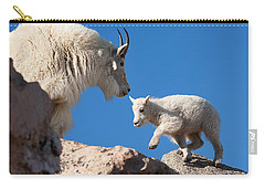 Carry-all Pouch featuring the photograph Baby Steps by Jim Garrison