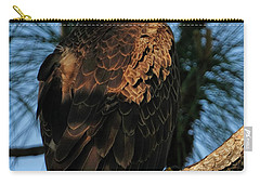 Bald Eagle At The Cape Carry-all Pouch