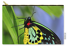 Bali Butterfly Carry-all Pouch