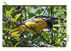 Baltimore Oriole Carry-all Pouch by Joe Faherty