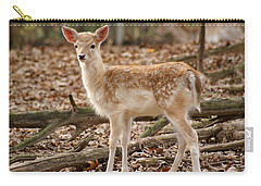 Carry-all Pouch featuring the photograph Beautiful Fawn by Jean Haynes