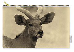 Beautiful Nyala Carry-all Pouch