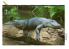 Carry-all Pouch featuring the photograph Big Gator On A Log by Myrna Bradshaw