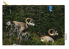 Big Horn Sheep Glacier National Park Carry-all Pouch