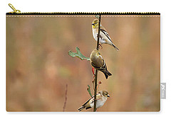 Bird Stack Carry-all Pouch