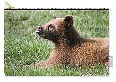 Black Bear Cub I Carry-all Pouch