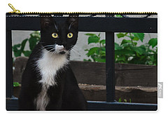 Black Cat On Black Background Carry-all Pouch