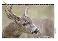 Carry-all Pouch featuring the photograph Black-tailed Deer by Doug Herr