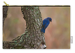 Blue Bird 2 Carry-all Pouch