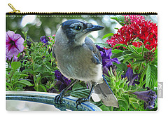 Carry-all Pouch featuring the photograph Blue Jay At Water by Debbie Portwood