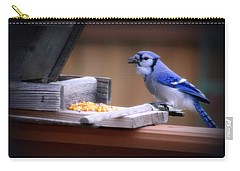 Carry-all Pouch featuring the photograph Blue Jay On Backyard Feeder by Kay Novy