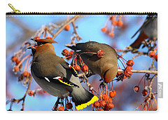 Bohemian Waxwings Carry-all Pouch