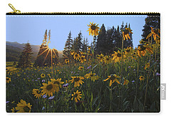 Boreas Pass Carry-all Pouch