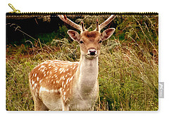 Wildlife Fallow Deer Stag Carry-all Pouch by Linsey Williams