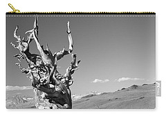 Bristlecone Pine And Cloud Carry-all Pouch
