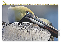 Brown Pelican Carry-all Pouch by Adam Romanowicz