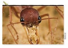 Bulldog Ant Myrmecia Gulosa Worker Carry-all Pouch by Mark Moffett