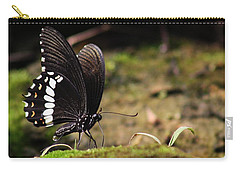 Carry-all Pouch featuring the photograph Butterfly Feeding  by Ramabhadran Thirupattur
