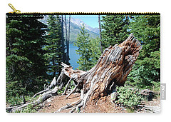 By Jenny Lake Carry-all Pouch by Dany Lison