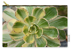 Cactus 63 Carry-all Pouch