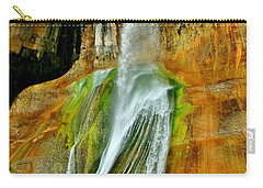 Calf Creek Falls II Carry-all Pouch