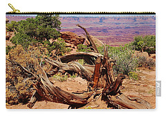 Canyonlands 2 Carry-all Pouch by Dany Lison